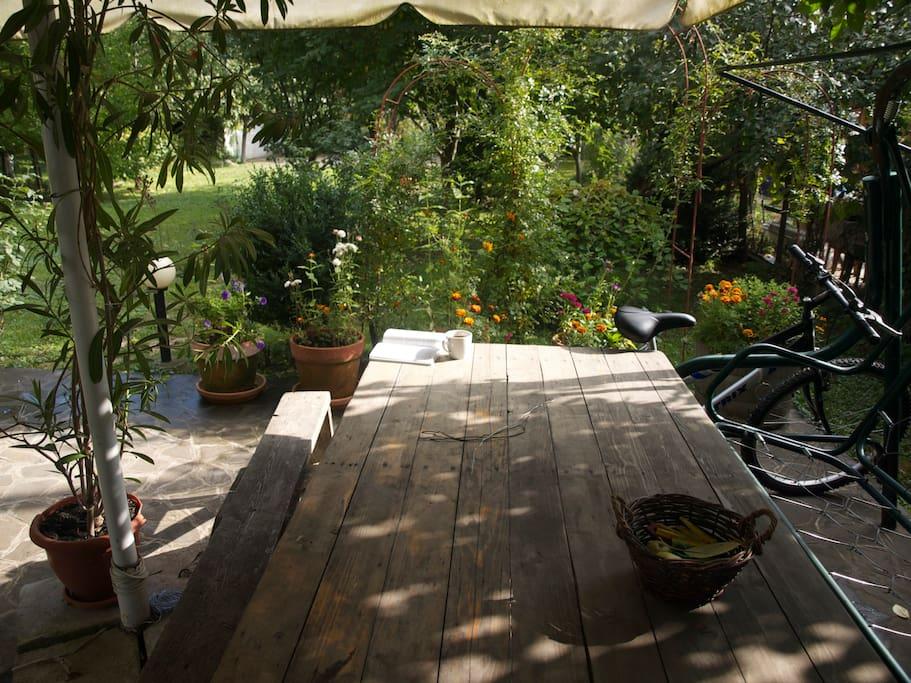 Sitting & dinning area in the garden.