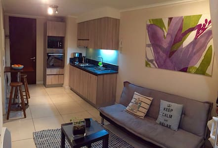 Incredible centric apartment in heart of Santiago - Santiago - Appartement