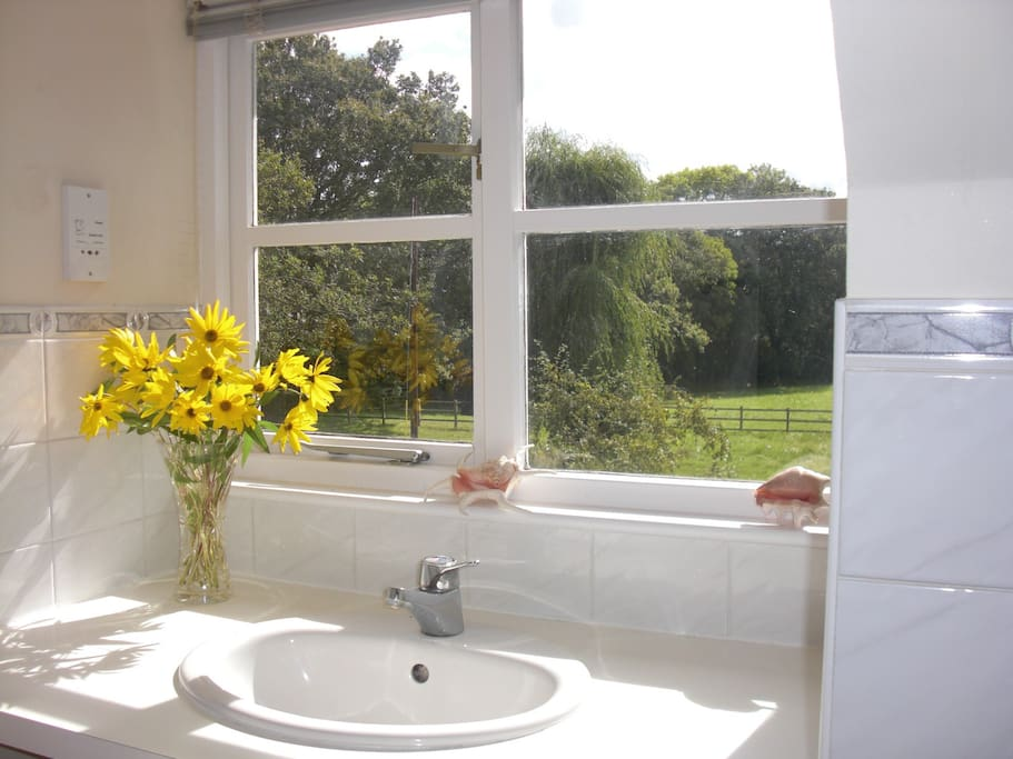 bathroom sink with wonderful meadow view