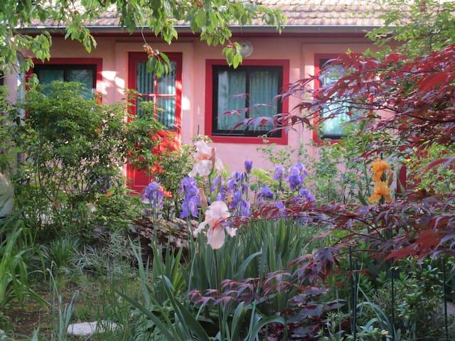 Studette zen à Lyon Croix-Rousse - idéal 1 p.