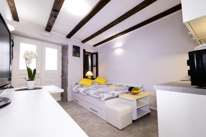 Apartments Bella Tara -  Stylish Ground Studio 1.V