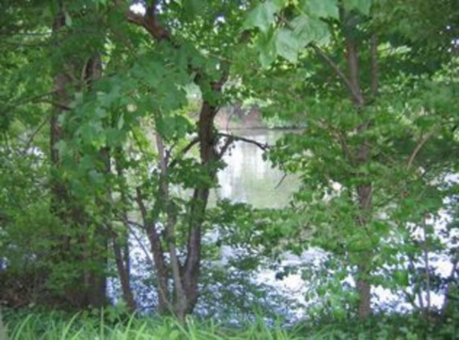 Lake view at rear