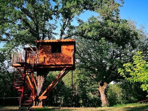 Cabane dans les arbres - Domaine Bocchineri