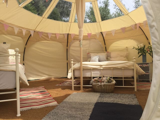 Horsemans star gazing tent