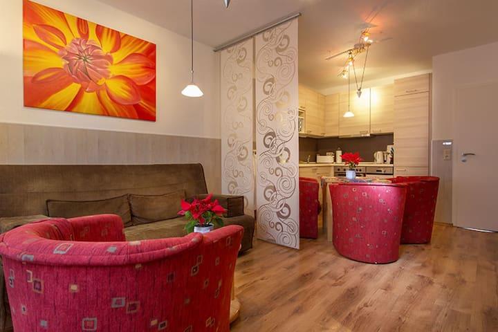 2-Zi. Apartment für bis zu 4 Gäste im Zentrum (57)