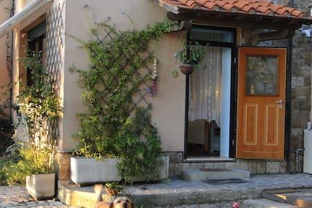 Piccola casa immersa nel verde - Rosignano Marittimo