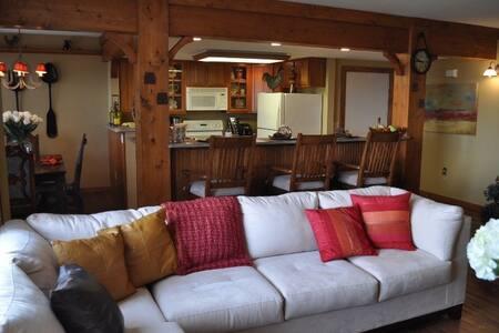 Beautiful 2bed rm. Mt. View Condo  - Burnsville - Wohnung