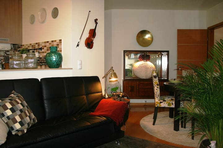 Beautiful flat in Lisbon Center