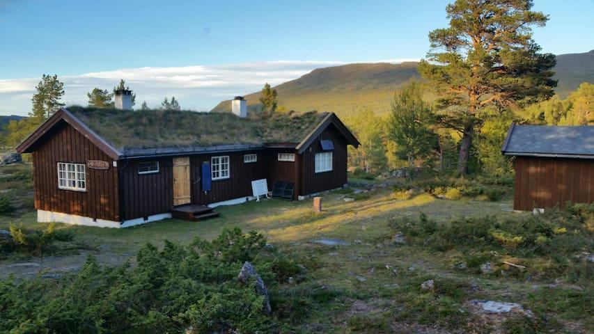 Cabin in the middle of Jotunheimen - Vågå - Cabin