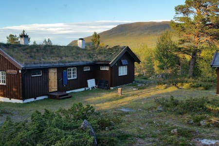 Cabin in the middle of Jotunheimen - Chatka