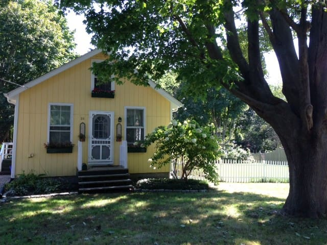 Sunny Cottage in Jamestown Village - Jamestown - House