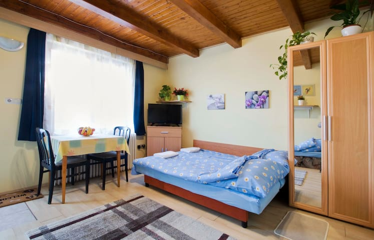 Cozy apartment with garden 25min from the center - Budapest - Pis