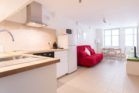 Lovely 2 rooms apartment - HYPER CENTRE - Strasbourg - Daire