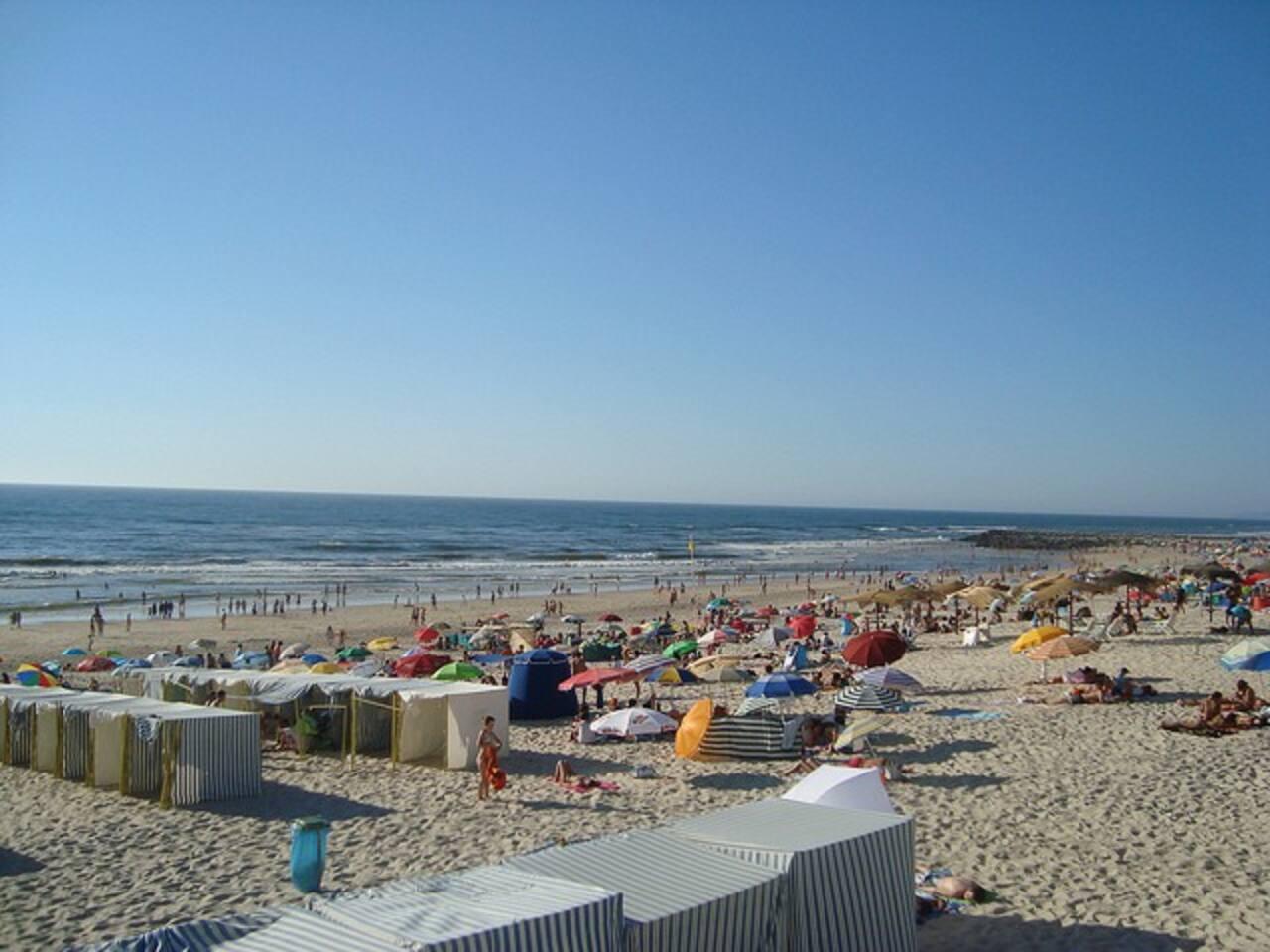 Areal da Praia da Vieira