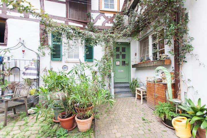Wohnen im Fachwerkhaus von 1609 - Heppenheim - Condo