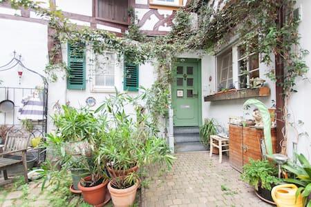 Wohnen im Fachwerkhaus von 1609 - Heppenheim - Condominio
