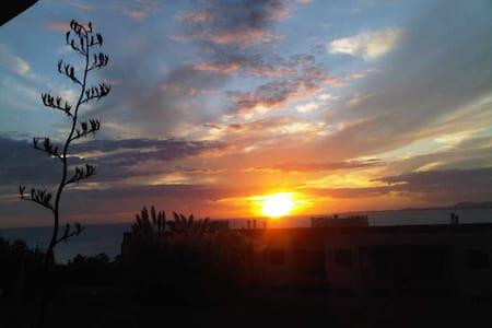 Mi Mar. Quartier Punta Ballena.