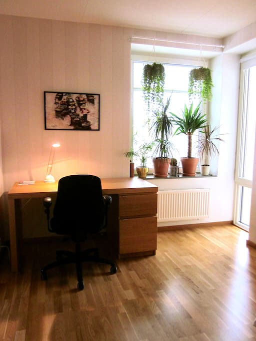 The room's writing desk, plants and windows