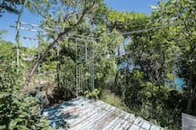 Scarborough Bluffs Sanctuary