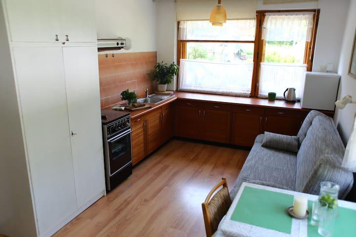 Pokój dla trzech osób z aneksem kuchennym