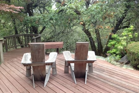 A spacious, comfortable BR w/queen bed & large bath. A 2nd BR w/ double bed also available (search Spacious Wine Country Room w/Deck). Rooms open to outdoor deck. Light breakfast served. Near top wineries, hiking/biking, Santa Rosa & Healdsburg.