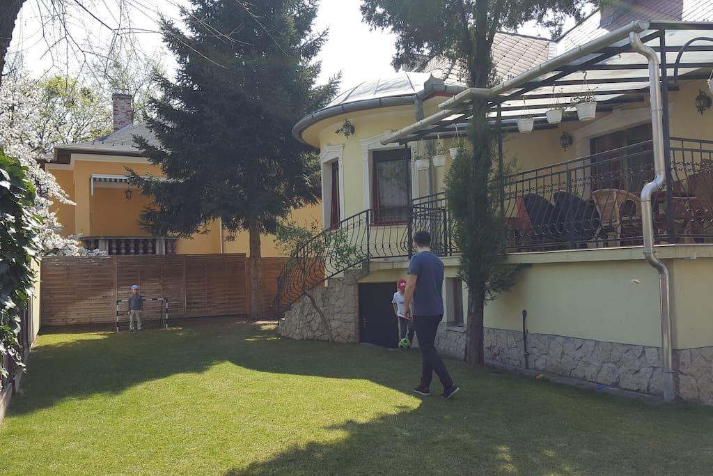 green yard around the house