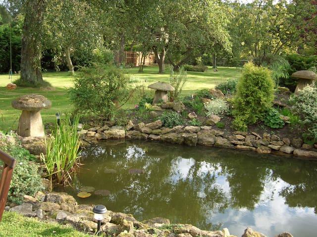 Pond area in centre of mature garden.