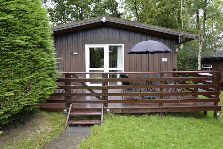 Cosy Woodland Lodge