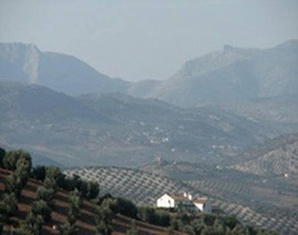 A rural hideaway in Andalucia - Iznájar - Villa