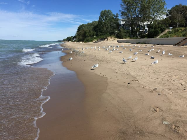 Reunite With Nature - Michigan City - Hus