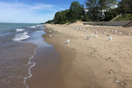 Reunite With Nature - Michigan City