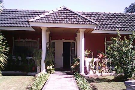 Magnifique maison au vert & piscine