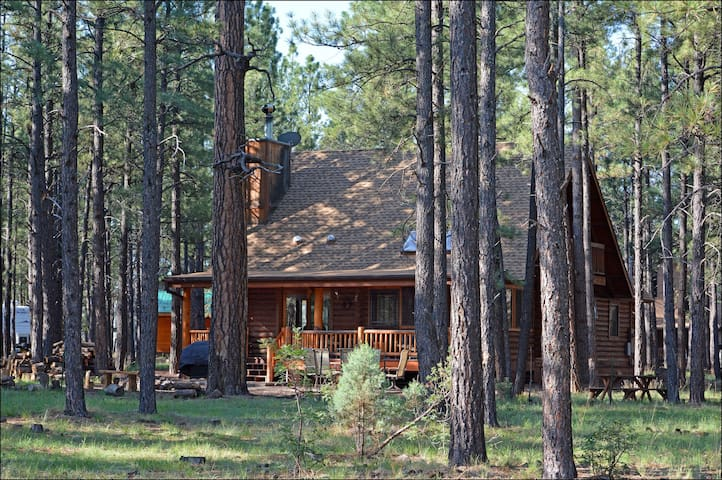 Log Cabin on National Forest - Pinetop - Maison