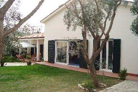 Amusing Villa - Santa Marinella - Santa Marinella