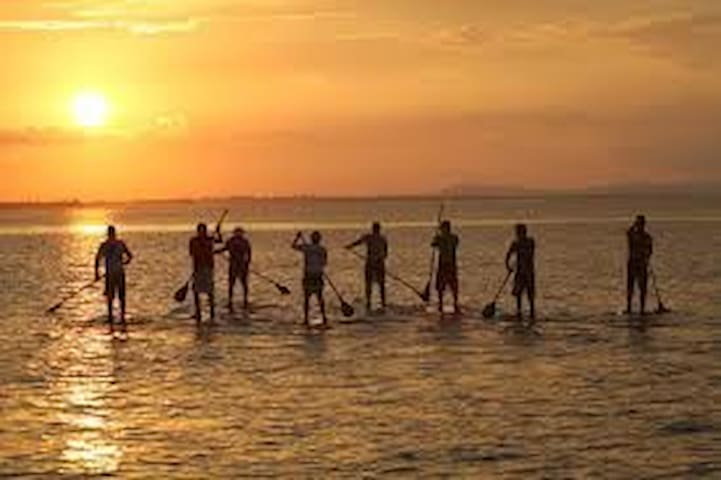 Stand-Up Paddle Boarding-Try it out at Cottage4Me today!