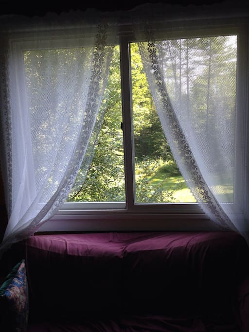 Views of greenery from every window