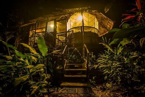 The Nest ,位于菠萝山