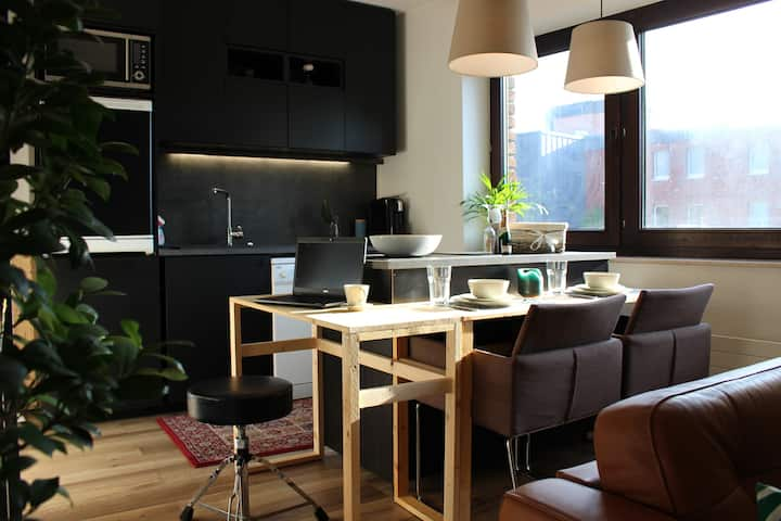 Living Small and Smart in a Tiny Apartment