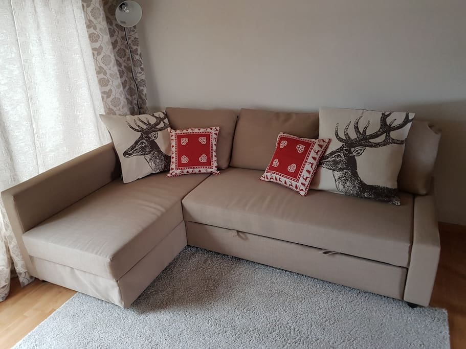 Bettsofa / Bed sofa