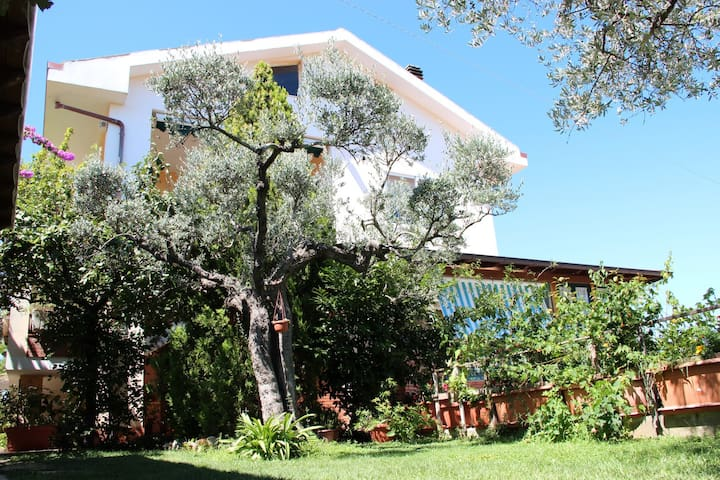 B&B - Singola con bagno interno - Vasto - Bed & Breakfast