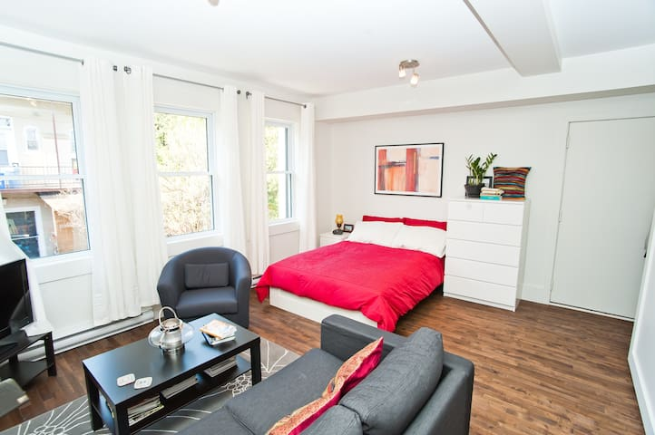 Charming studio in old-Rosemont - Montreal - Leilighet