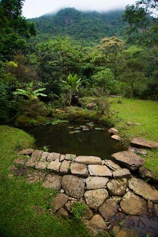 The main house garden.