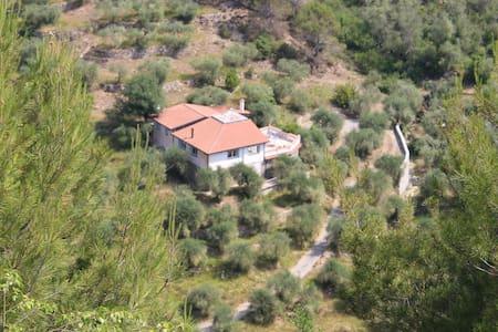 Italiaanse Riviera luxe landhuis - Olivetta San Michele - Huvila