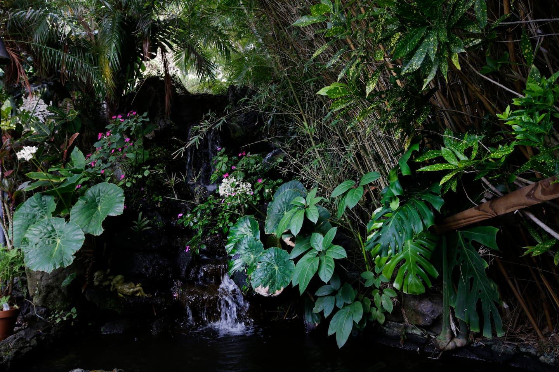 Beautiful relaxing gardens