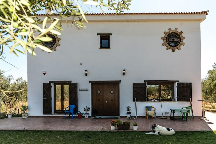 Casa Halcon, life on an olive finca. Double bed.