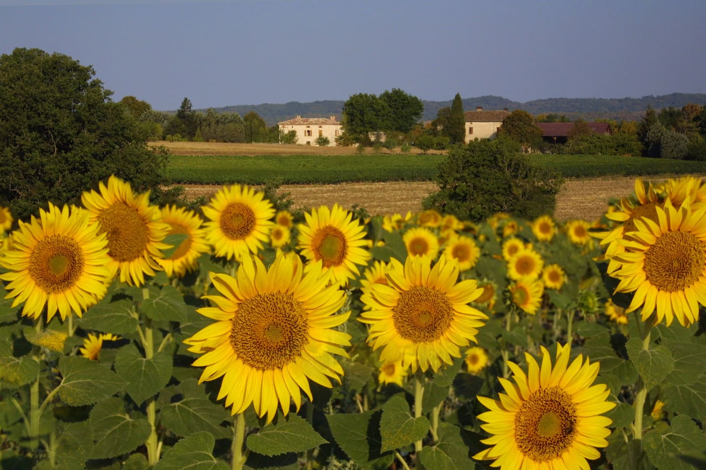 Lovely southern France Country Farmhouse