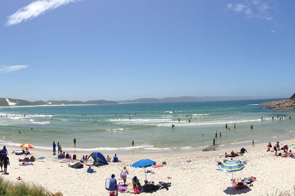 3 minute drive to Ocean Beach