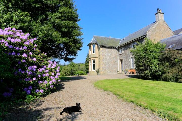 Luxury B&B that offers just that little bit extra! - Scottish Borders - Huoneisto