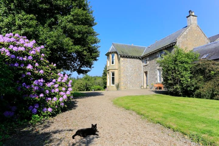 Luxury B&B that offers just that little bit extra! - Scottish Borders - Flat