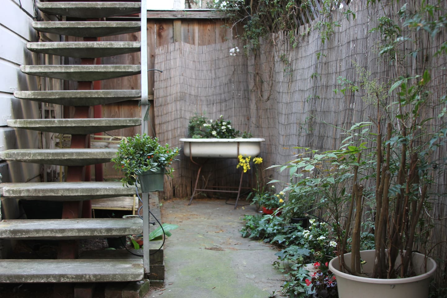 Secluded back patio for enjoying the sun